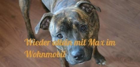 Wieder allein mit Max im Wohnmobil | Rumtreiber on Tour | Scoop.it