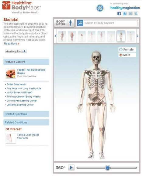 Body Maps : Exploration interactive du corps humain | TICE, Web 2.0, logiciels libres | Scoop.it