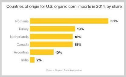 Americans Want Organic Food: A Surge in GMO-Free Imports   Business News & Finance   Scoop.it
