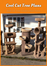 Cool Cat Tree Plans: Best Cat Tree Construction Plans | Pets And Animals | Scoop.it