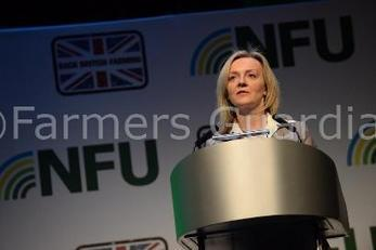 Farmers determined to begin badger cull roll out - Raymond | News | Farmers Guardian | Bovine TB, badgers and cattle | Scoop.it