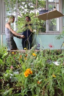 ecoLAB: Jardim para Epicuro   Hortense   Scoop.it
