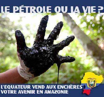 Nature alerte: 03/04/2013...L'Equateur envisage de vendre aux enchères plus de 3 millions d'hectares de forêt amazonienne aux compagnies pétrolières mondiales | Géographie : les dernières nouvelles de la toile. | Scoop.it