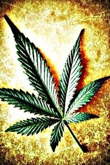 Parents Who Support Easing Marijuana Laws Want it Illegal for Those Under 21   The Partnership at Drugfree.org   Exploring Current Issues   Scoop.it