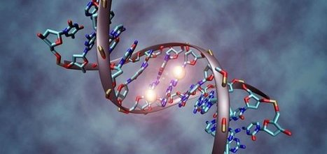 Scientists discover second DNA code - Unexplained Mysteries | Strange days indeed... | Scoop.it