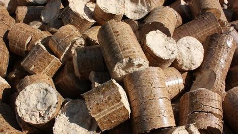 Chronique des Matières Premières - Le bois recyclé ne trouve plus assez de débouchés en France   Environnement et santé   Scoop.it