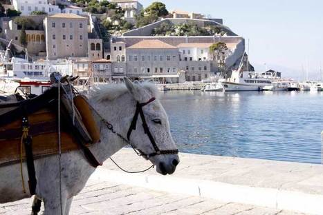 The Town of Hydra   Greece Travel   Scoop.it