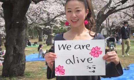 « Nous sommes vivants, visitez le Japon ! »   Blog Evasions - Ouest France   Japon : séisme, tsunami & conséquences   Scoop.it