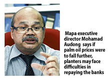 Rising costs worry oil palm planters - Business Times - Malaysia   Agronomic articles   Scoop.it