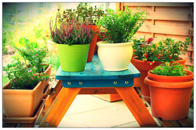 How to Have a Big Garden in a Small Space | Garden and Outdoor Australia 2 | Scoop.it