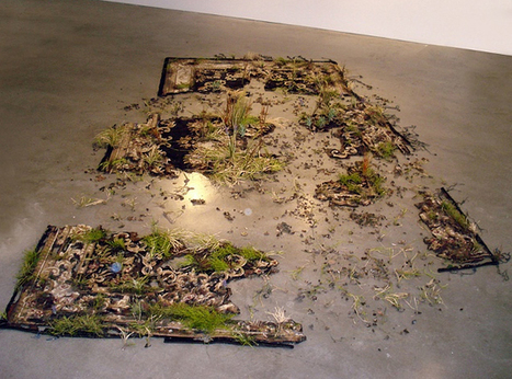 Valery Hegarty: Rug with Grass | VIM | Scoop.it