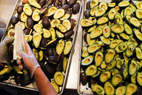 Chipotle Isn't That Worried About the Avocado Supply | Erba Volant - Applied Plant Science | Scoop.it