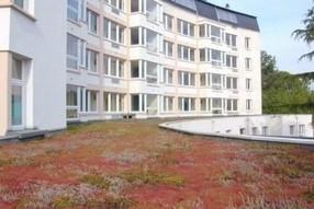Eco-habitat : les toitures végétalisées vont pouvoir fleurir | Constructions écologiques | Scoop.it
