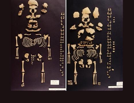 El primer caso probado de gemelas prehistóricas ibéricas sale a la luz / Noticias / SINC - Servicio de Información y Noticias Científicas   Ciencia y Tecnología Iberoamericana   Scoop.it