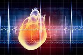 Low Magnesium Ups Cardiovascular Death Risk - Renal and Urology News | Global Food Code and Codex Alimentarius | Scoop.it