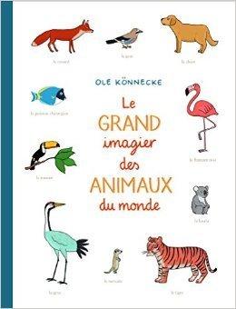 Le grand imagier des animaux du monde, Ole Könnecke, Ecole des loisirs, 12.20 EUR | Coups de cœurs jeunesse | Scoop.it