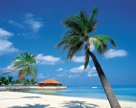 Beautiful Things To Do During Caribbean Holidays   Travel   Scoop.it