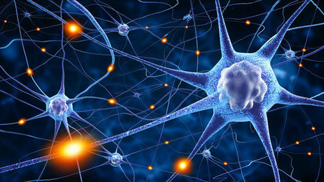 Neuroplasticity: Rewiring Your Brain For Optimal Learning | Managing Technology and Talent for Learning & Innovation | Scoop.it