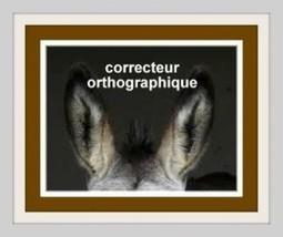 Les correcteurs orthographiques : pédagogues ? | orthographe et grammaire : un programme innovant | Scoop.it