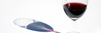 Le vin bio ignore la crise   Economie Responsable et Consommation Collaborative   Scoop.it