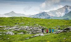 10 elementos esenciales para el trail running | xoliveras | Scoop.it
