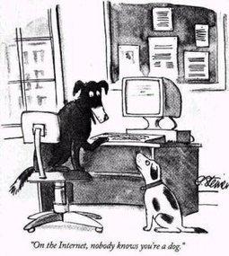 File:Internet dog.jpg - Wikipedia, the free encyclopedia   recycling   Scoop.it