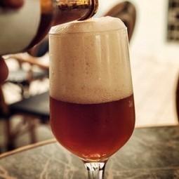 Birra, crollano le vendite tra luglio e settembre. Pesa l'aumento delle accise | Villaggio Chronicle | Scoop.it