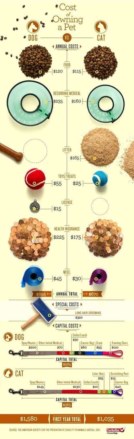 Dogs vs. Cats: Which One Cost You More? [Photo Infographic]   Infograph   Scoop.it