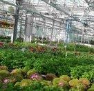 Astredhor : Astredhor, Institut technique de l'horticulture | Travaux paysagers | Scoop.it