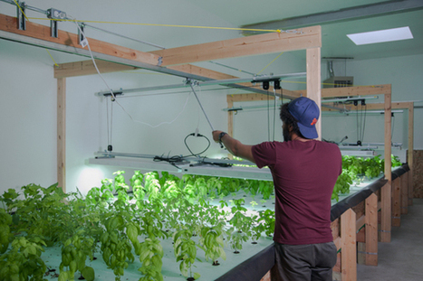 Grown in Detroit, but not in the ground: The next evolution of urban agriculture | Vertical Farm - Food Factory | Scoop.it