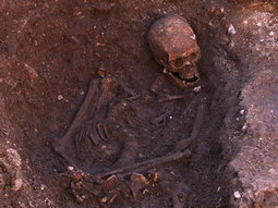 Genome study to pursue Richard III's medical history | Chemistry World | Scientific life | Scoop.it