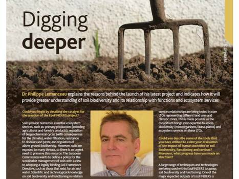 EcoFINDERS in Research Media   EcoFINDERS -  Science for a sustainable use of soils   Scoop.it
