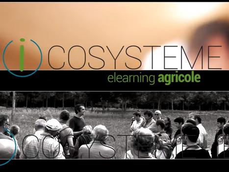 Uneformation à distance en 2017sur l'Agro-écologie, l'Agroforesterie et l'Agriculture de Conservation :I-COSYSTEM   AC Agriculture de Conservation   Scoop.it