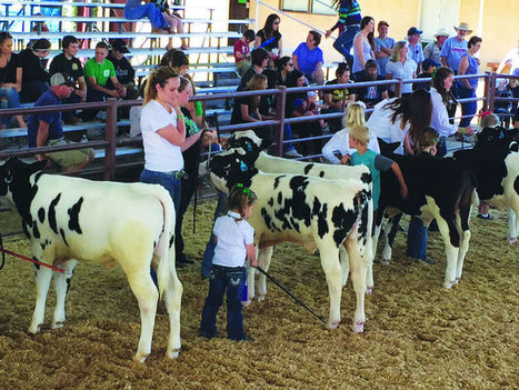 It's time to celebrate National 4-H Week | CALS in the News | Scoop.it