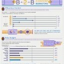 The Contentious State of B2B Content Marketing [Infographic] | Innova-marketing | Scoop.it