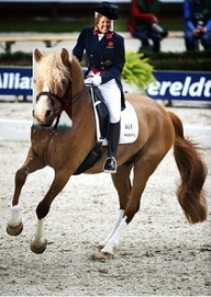 Get Started In Dressage With These Helpful Tips | Dressage Hafl | Scoop.it