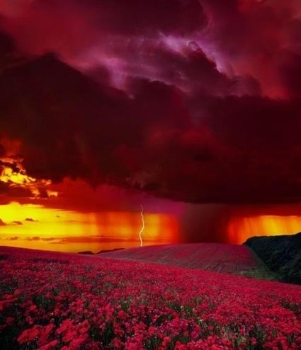 Amazing nature photos #4 | InspireFirst | My Photo | Scoop.it