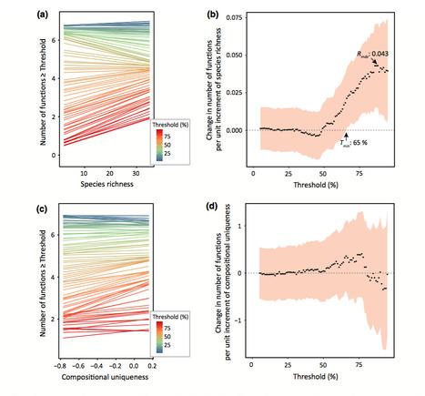 Low multifunctional redundancy of soil fungal diversity at multiple scales | Genomics and metagenomics of microbes | Scoop.it
