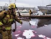 Squid boat spills 500 gallons of diesel in Ventura Harbor - Ventura County Star | Oil Spill | Scoop.it