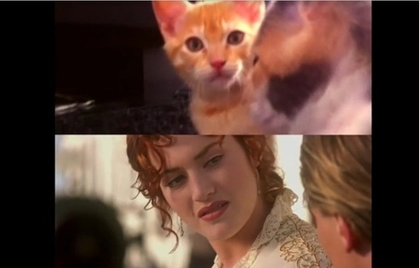VIDEO. Les films «Titanic» et «Psychose», rejoués par des... chatons | Seniors | Scoop.it