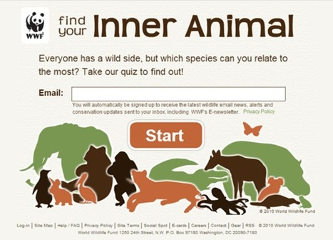 Find Your Inner Animal | Good Advice | Scoop.it