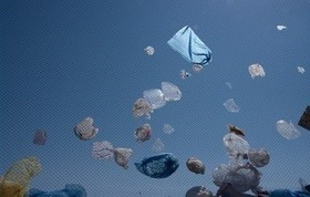 Paper or Plastic … or the Great Pacific Garbage Patch? | sustainability | Scoop.it