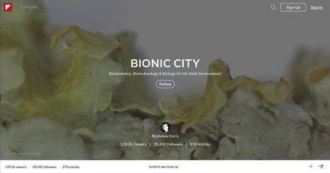 Bionic City magazine, Mar 2015   Bionic City   Scoop.it