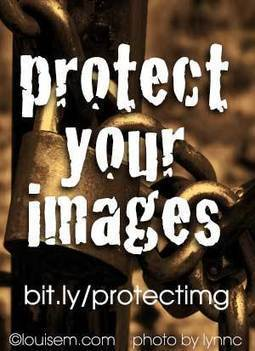 Can You Protect Images from Copyright Infringement? | WordPress Website Optimization | Scoop.it