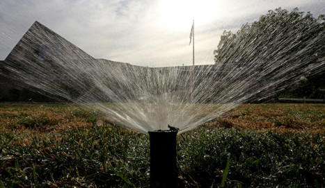 A dry January pulled down water conservation rate in California   water   Scoop.it