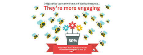 13 Reasons Why Your Brain Craves Infographics | visual data | Scoop.it