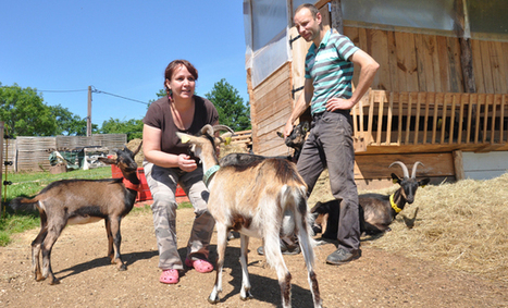 Sabine Vanhoorne, éleveuse de chèvres en Dordogne | Agriculture en Dordogne | Scoop.it