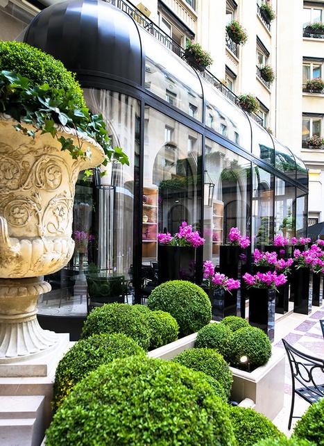 Les nouveaux restaurants parisiens de la rédaction AD | What's new in France : Whaff (wine, history, art, food : France) | Scoop.it