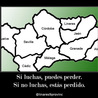 Linares Novena Provincia