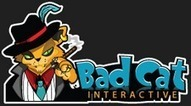 Internet Marketing is Process of Communicating Information About Product | Bad Cat Interactive | Scoop.it
